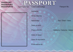 30+ Blank Passport Templates