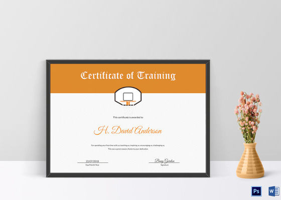 16+ Training Certificate Templates
