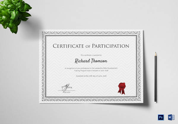 Attractive Training Participation Certificate Template