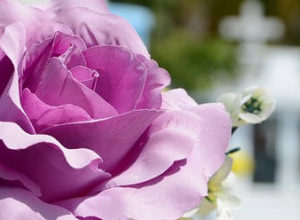 10+ Best Funeral Invitation Quotes, Sayings