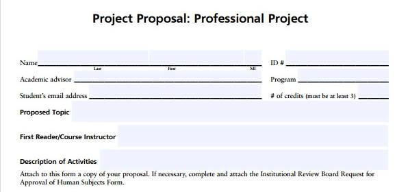 Professional proposal template